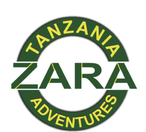 cwc partner- Zara Tours